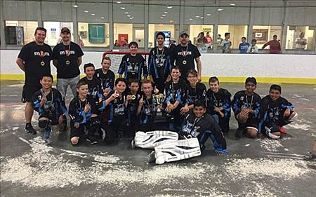 PW8 Stealth - 2016 Peewee Champions